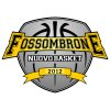Nuovo Basket Fossombrone
